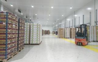 IFS logistics Algeciras